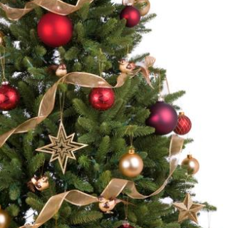 12 Places to Buy a Real Christmas Tree in Chesterfield ...