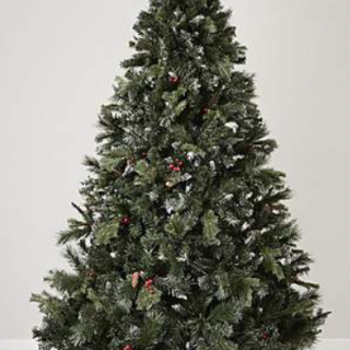 the latest a1da3 ba28a 12 Places to Buy a Real Christmas Tree in Chesterfield ...