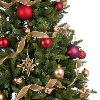 12 Places to Buy a Real Christmas Tree in Nottingham - Snizl Blog