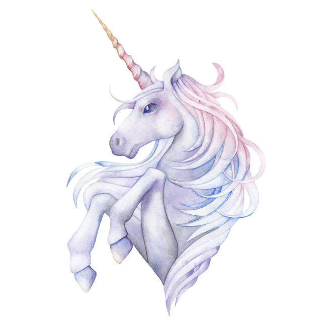unicorn picture