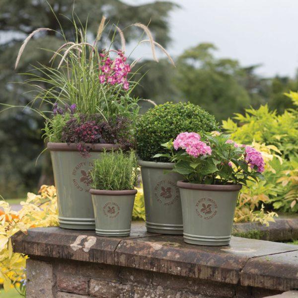 Top Garden Centres In Nottingham Snizl Blog