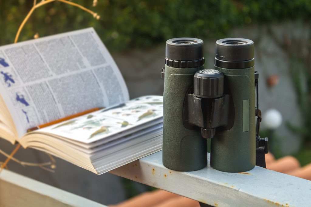 The equipment needed for effective birdwatching is binoculars and a guide